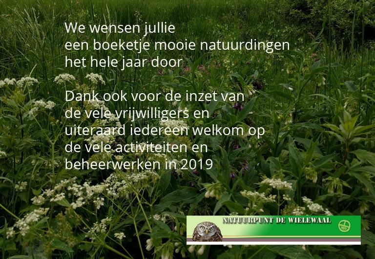 Nieuwjaar voor NP De Wielewaal
