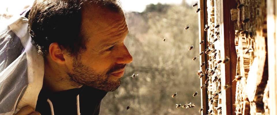 Pieter bij het bijenhotel