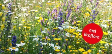 Zaai nu je bloemenweide in met Ecoflora