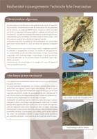 Technische fiche de oeverzwaluw