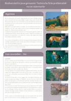 Technische fiche Problematiek vos en steenmarter