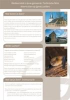 Technische fiche Vleermuizen op (grote) zolders